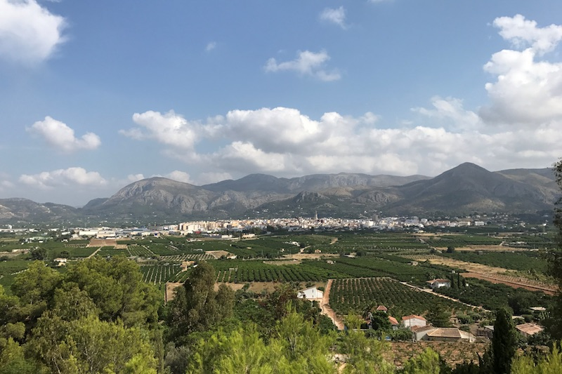 Natasja tipt: 'de lekkerste sinaasappels van Spanje'