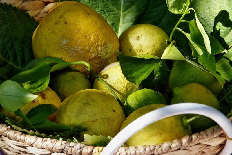Doris tipt: likeur maken van fruitoverschot