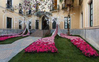 Flora: herfsteditie van Córdoba's patio- en bloemenfestival