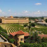 wijnvelden navarra