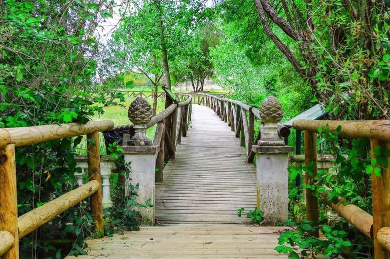Unesco Doñana