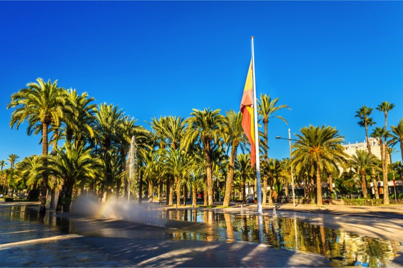 Unesco palmbomen elche