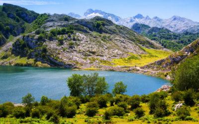 Natuurparken in Spanje: groen met een griffel