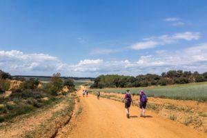 De Camino de Santiago loop in Spanje