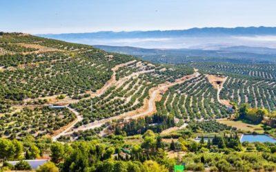 Andalucía encantadora Baeza y Úbeda