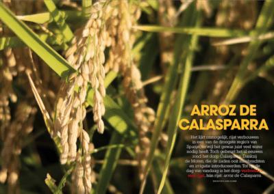 espanje-1-2019-arroz
