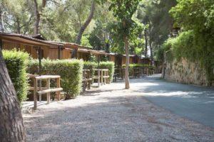 camping caledonia