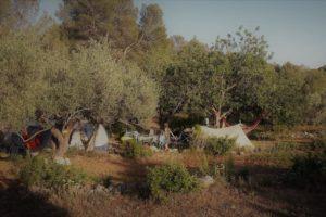 camping mas de mingall