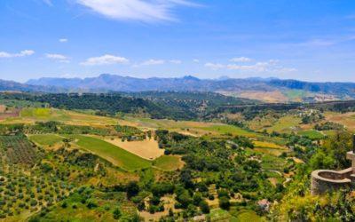 Fietsen langs het oliespoor in Andalusië