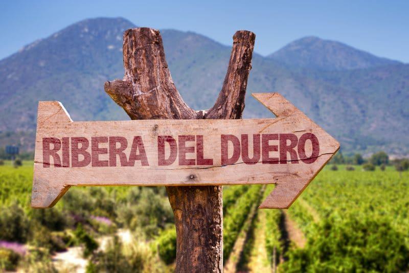 10 x wijnbodega's bezoeken in Ribera del Duero