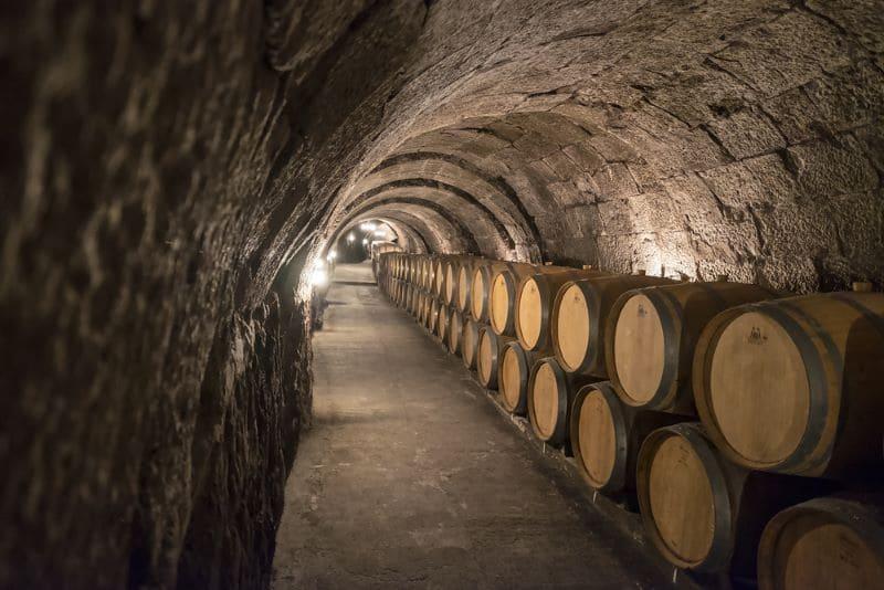 wijntunnel-wijnmakerij