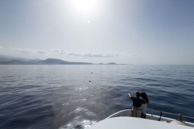Met de boot naar Tenerife