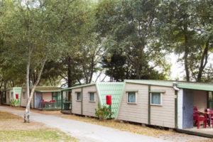 bungalows-slaapplaatsen-camping