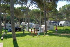 grasveld-kamperen-kinderen-camping