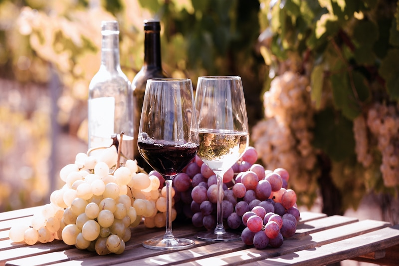 Proost met deze Spaanse wijn (inclusief proefcursus)