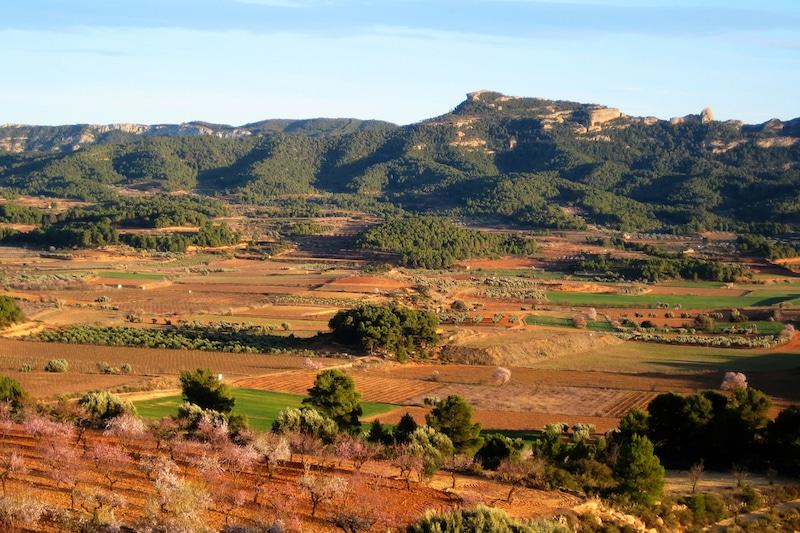 Terra Alta agaron catalonie