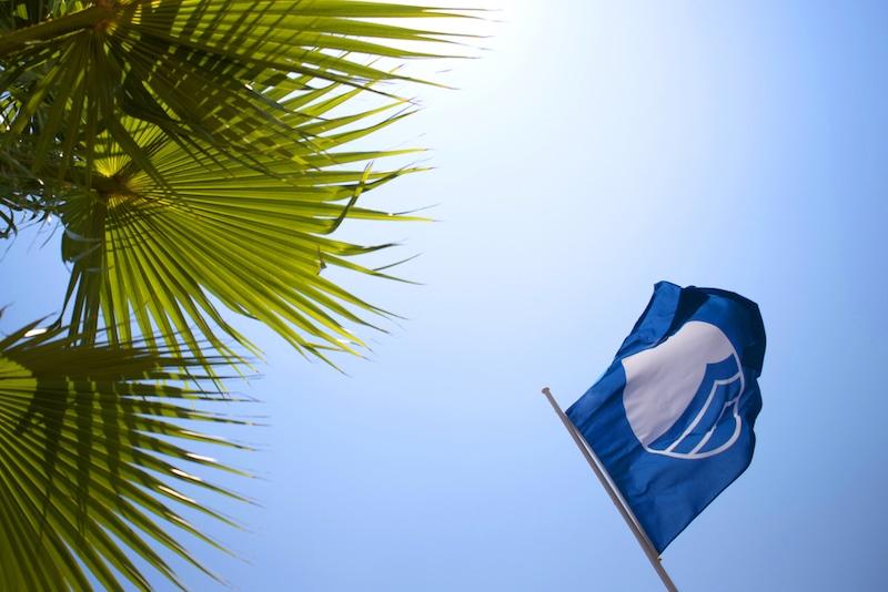 Blauwe vlag goed teken voor milieu, palmbladen
