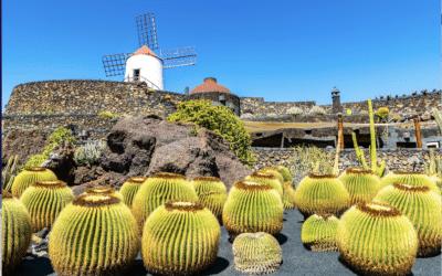 'Reizen naar Canarische Eilanden mag weer'