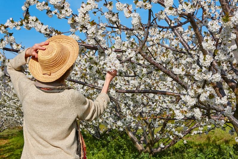 Dit is één van Spanjes allermooiste lentebestemmingen