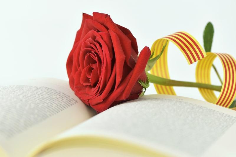 Roos op een boek