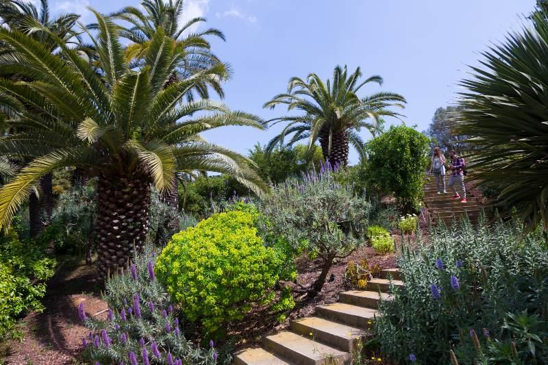 Botanische tuinen van Barcelona