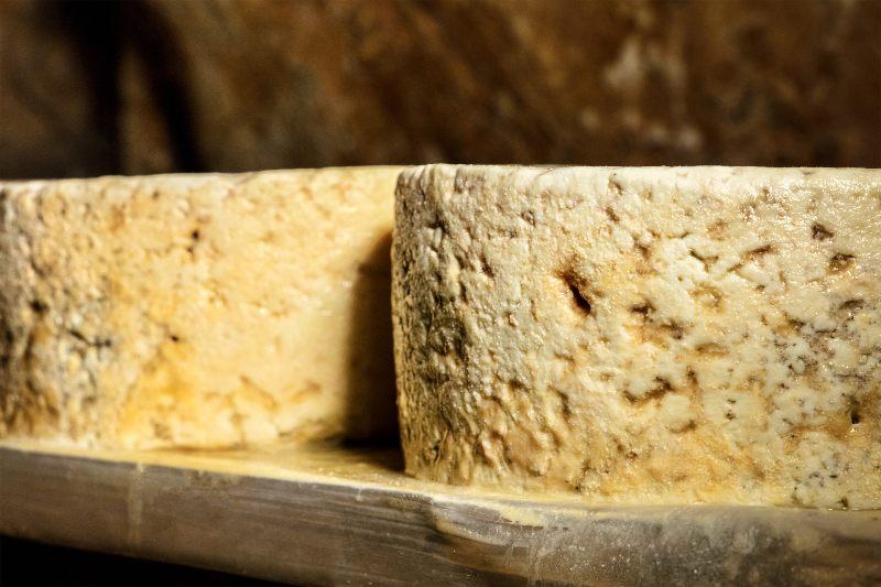 Kaas uit Picos de Europa